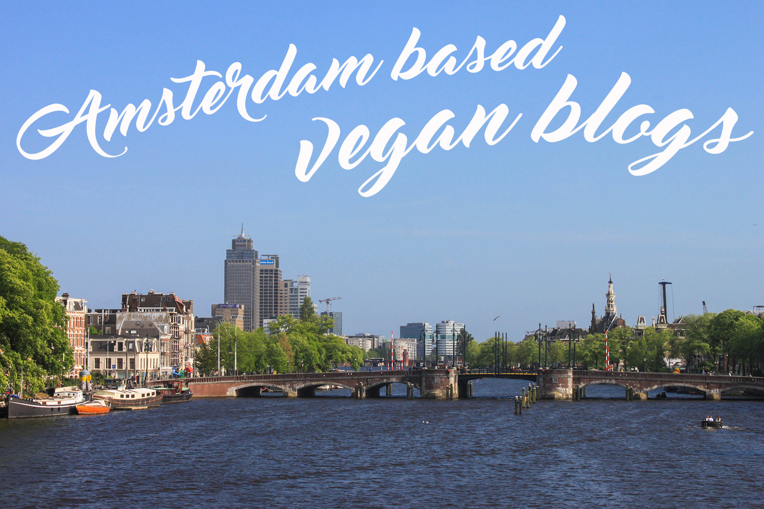 amsterdam vegan blogs