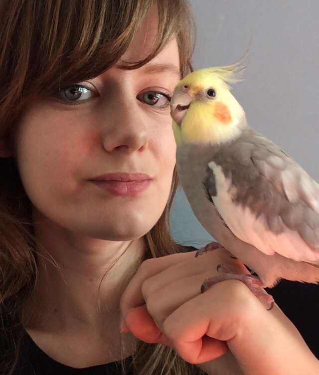 Birdwonders