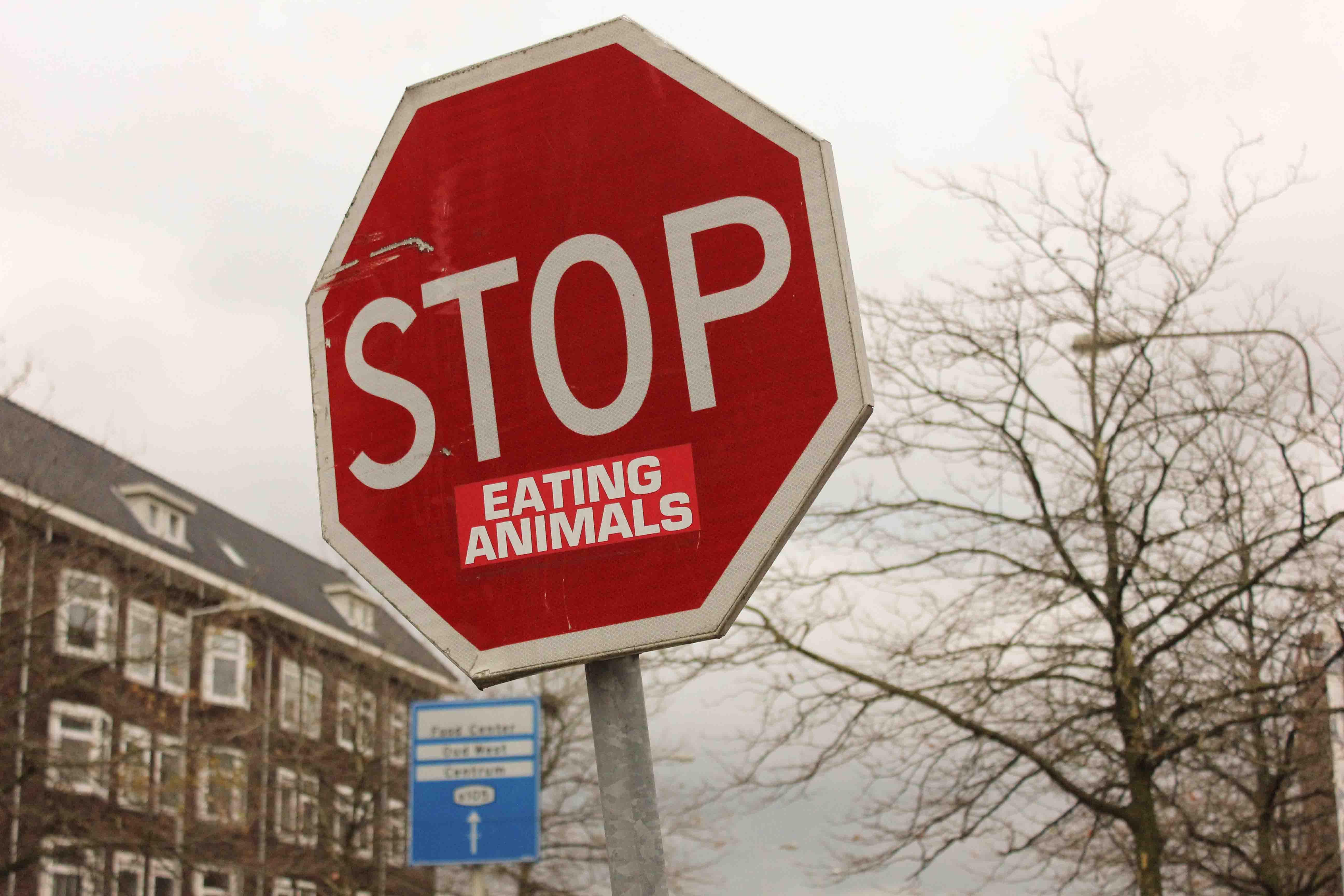 stop eating animals sticker